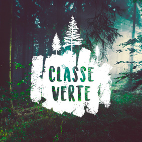 Création Logo Classe verte – Graphiste freelance La Réunion