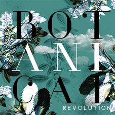 Création affiche Botanical Revolution – Graphiste logo freelance Réunion